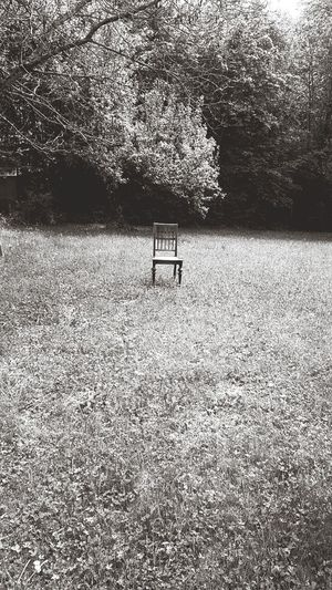 c Chair Chairswithstories Chairporn Chairs In Nature Chair Art Alone Alone In Nature Alonechair
