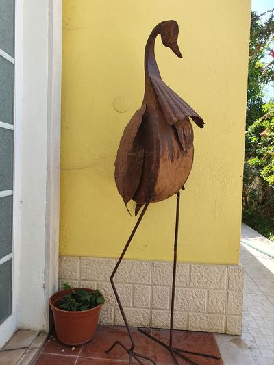 High angle view of bird on potted plant against wall
