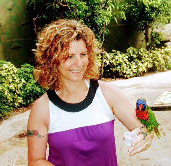 Birds_collection