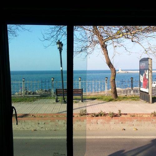Window Okul D önüşü Resim çekme merak ı
