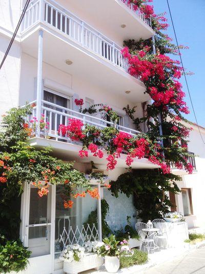 Greece,samos