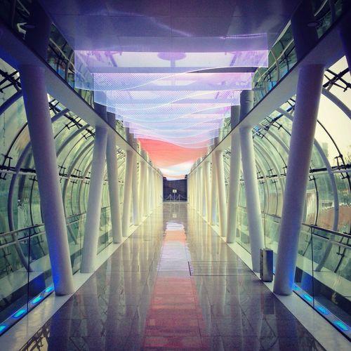 Bridgeporn Bridge Singapore