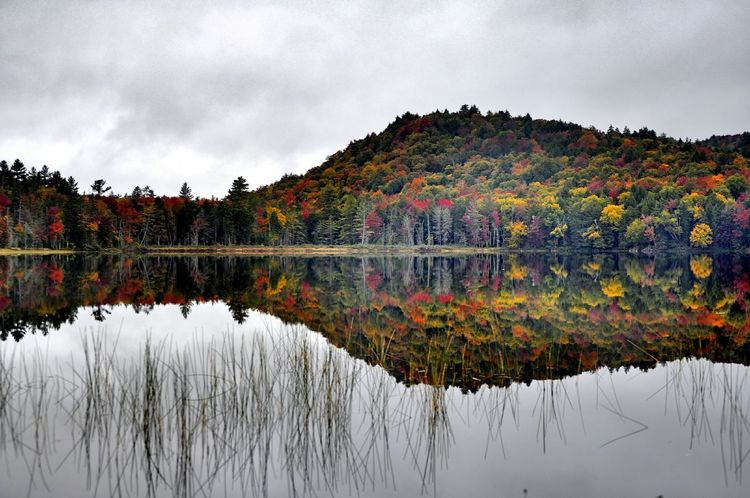 Reflection Water Lake Nature Reflection Lake Reflection Landscape Natural Parkland Outdoors Upstate New York Autumn Collection My Best Photo 2016 Wilderness Adirondack Mountains Autumn Colours Share Your Adventure Reflection_collection Reflections In The Water My View Right Now Nature On Your Doorstep Autumn 2016 Nature At Work Waterfront Beauty In Nature