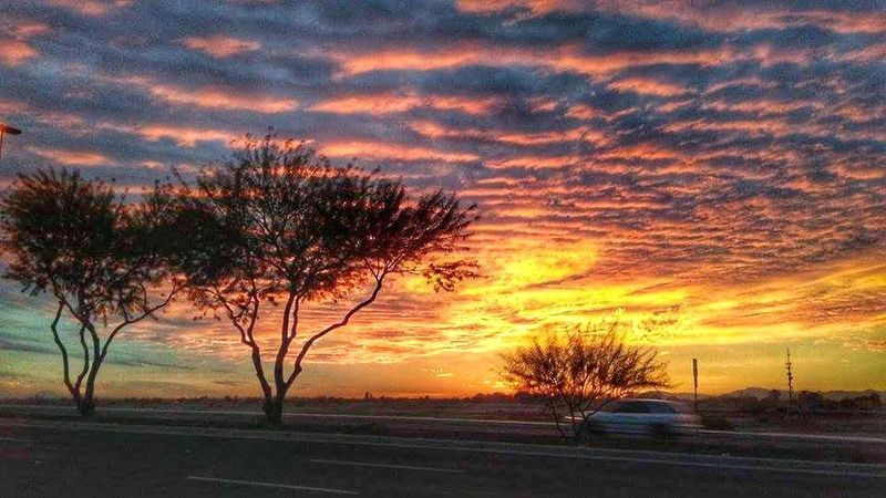 Sunset in Gilbert, Arizona Arizona Nature Sky Sunset Neon Life