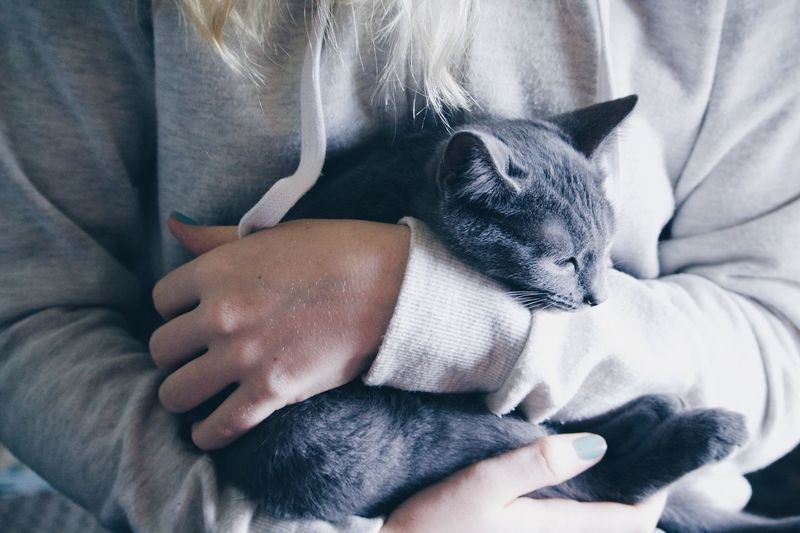Midsection of woman with cat