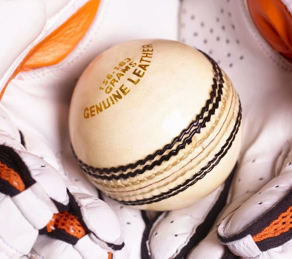White Cricket Ball Caught In Gloves