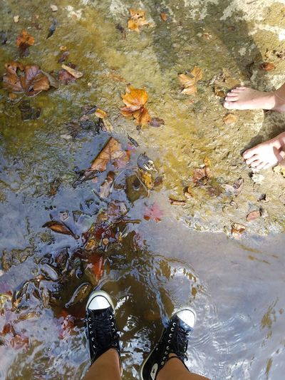 Low Section High Angle View Shoe Human Leg Water Standing Real People Day Outdoors Shallow Lifestyles Human Body Part Nature Creekside Photography Creekadventure Creekwater Creek Photography Creek View Creek Life Creekside Creek Beauty In Nature Nature Human Skin Young Adult