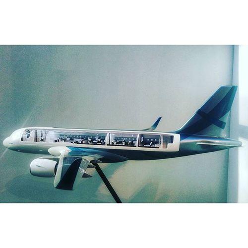 Шикарный самолётик ✈ 😊 самолет Flyght Airbus Contemporaryart современноеискусство искусство art fair cosmoscowfair cosmoscow Moscow