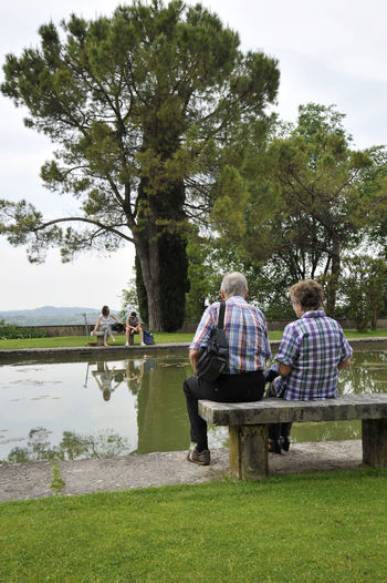 Rear View Of People Sitting On Bench By Lake At Park