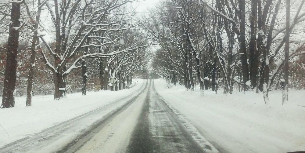 Winter Wonderland Snowy Days... Slippery Roads