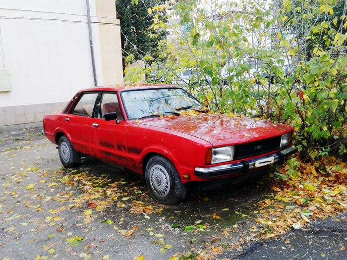 Day Outdoors Walk Friends ❤ City Car Red Land Vehicle Old Car Old Ford Ford Old Cars ❤ Beautiful Car Beautiful Cars Red Car Red Cars EyeEm Romania Romanianlife Pitesti Autumn🍁🍁🍁 Chill Peace Love Arges County,