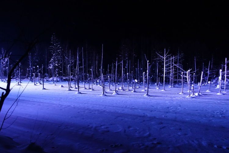 Night Snow Cold