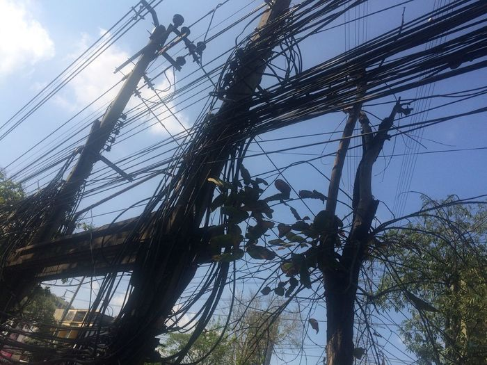 Thailand Only Cable The Purist (no Edit, No Filter) Streetphotography Power Line  Sky Low Angle View Power Supply Outdoors No People Day Electricity  Complexity Connection Telephone Line Electricity Pylon Tree Nature