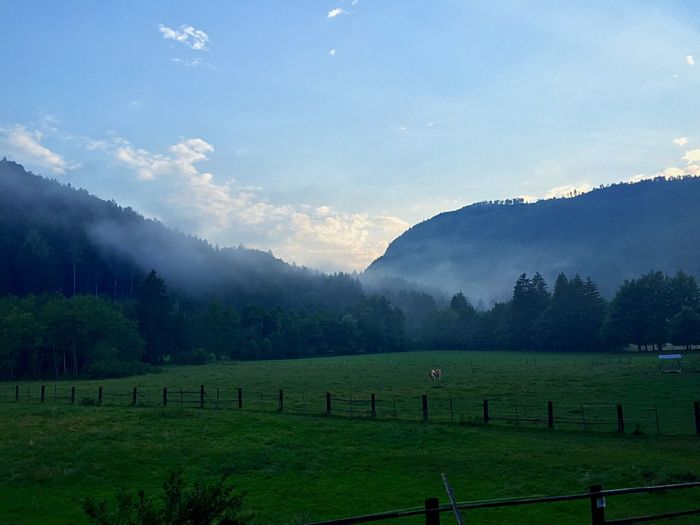After rain moments ☔️ Austria Summer Nature EyeEm Best Shots - Nature EyeEm Best Shots IPhoneography Landscape EyeEm Nature Lover Villach Mountains