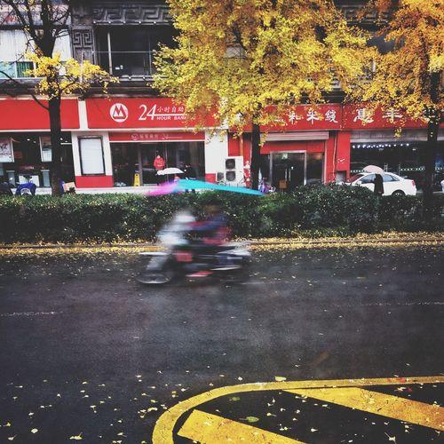 秋去冬来 People Photography Snapseed Hefei IPhone4s 手机摄影 街头摄影 IPhoneography 合肥影像 街拍