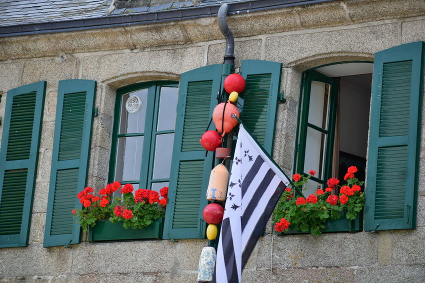 Brittany Flag with seafaring attributes Architecture Building Building Exterior Built Structure Day Decoration Flower Flower Pot Flowering Plant Hanging House Lantern Lighting Equipment Low Angle View Nature No People Outdoors Plant Red Residential District Window