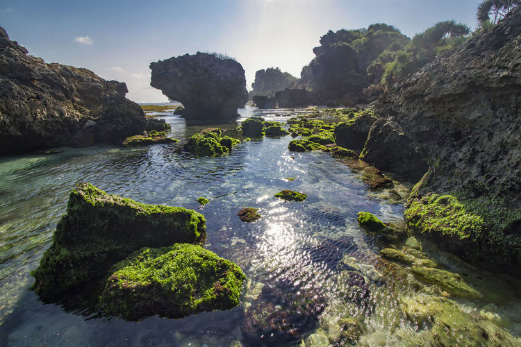 low tide rock