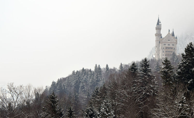 #blackandwhite #castle  #neuschwanstein #trees @rural Building Exterior Outdoors Travel Destinations Winter