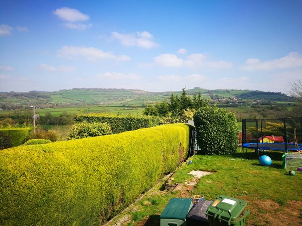 Yellow Growth Rural Scene Agriculture Green Color Sky Nature Sunlight Multi Colored Scenics Outdoors No People Beauty In Nature Grass Day Hedge Gardening Fluffy Clouds Springtime Hedge Cutting Trampoline Photography Trampoline