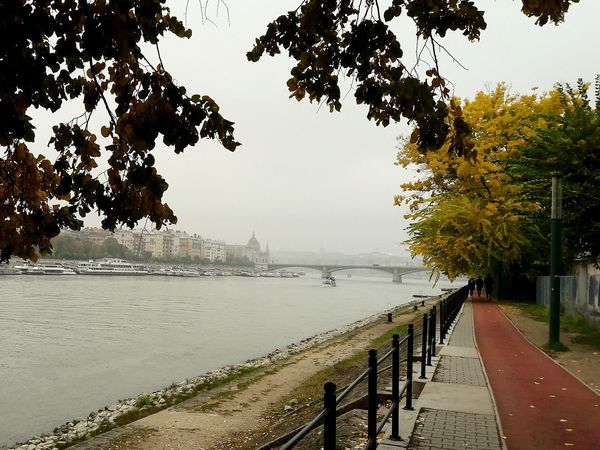 Margaret Island today morning - can't get bored with this place 😄 Autumn Collection Budapest - Hungary Water Danube In Budapest Margaret Island