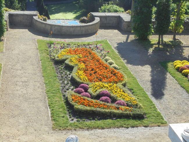 MONDOVERDE365.NL DitisLimburg Prachtig Limburg Noedit Landgraaf Lovelynatureshots Artinthegarden Walkinthepark Eyeemnaturelover💕💕😊☺ Landscape_photography