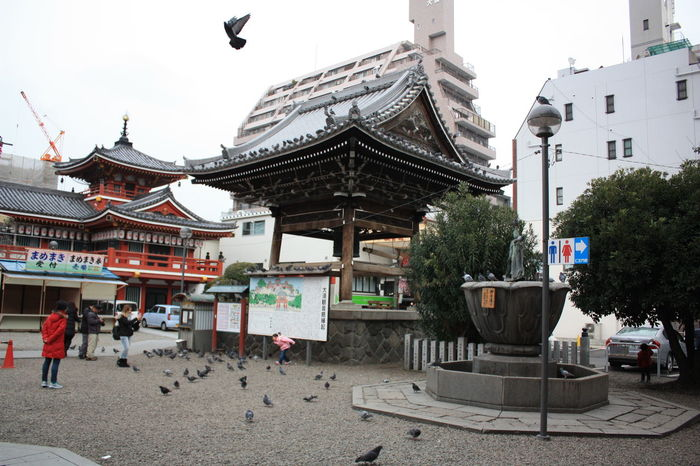 Nagoya Osu Kannon Temple Osu Shopping Arcade Outdoors Pigeon