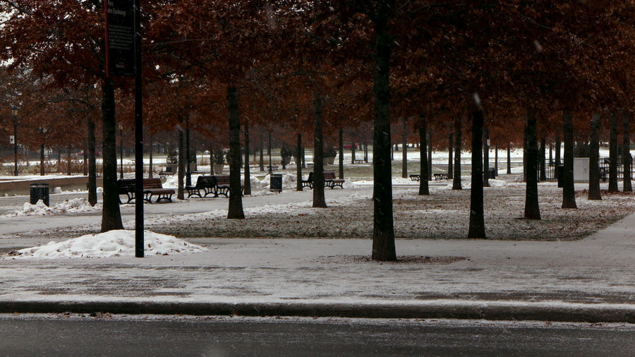 Empty road in park during winter