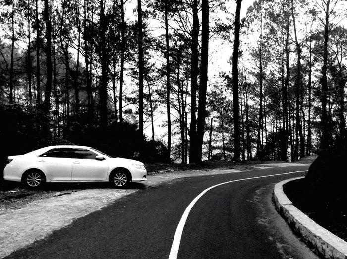 Going home. Black & White Puncaklawang Vacation