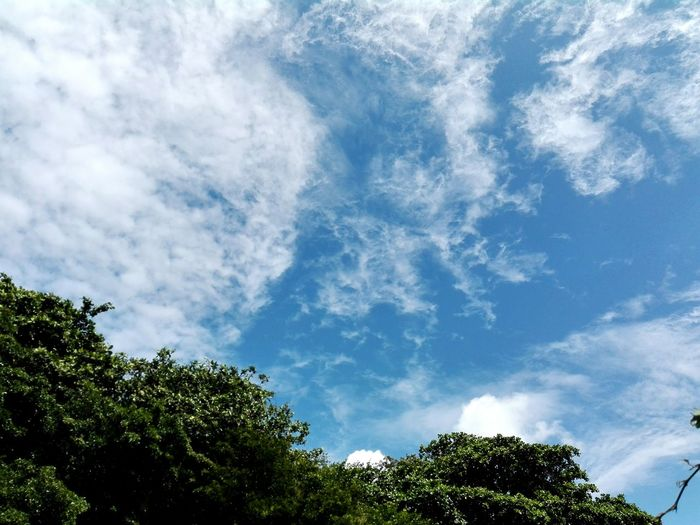Amazing blue sky Taking Photos First Eyeem Photo Hello World Relaxing Enjoying Life Hi! Nature Photography Mauritius Island  Naturelovers Landscape_photography Blue Sky