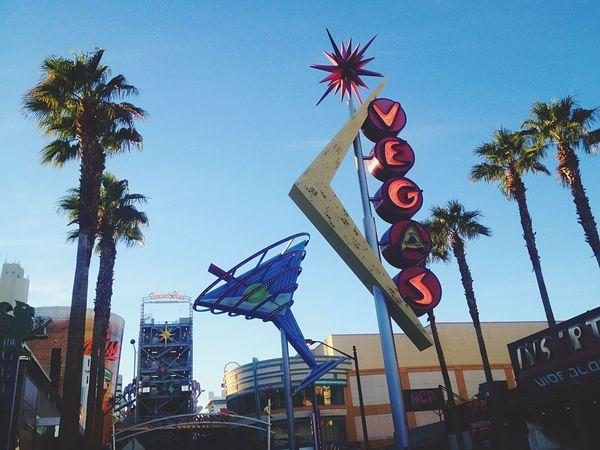 Fremont Street in Vegas Vegas  Las Vegas Freemont Street Palm Trees Neon Lights Martini Neon Sign