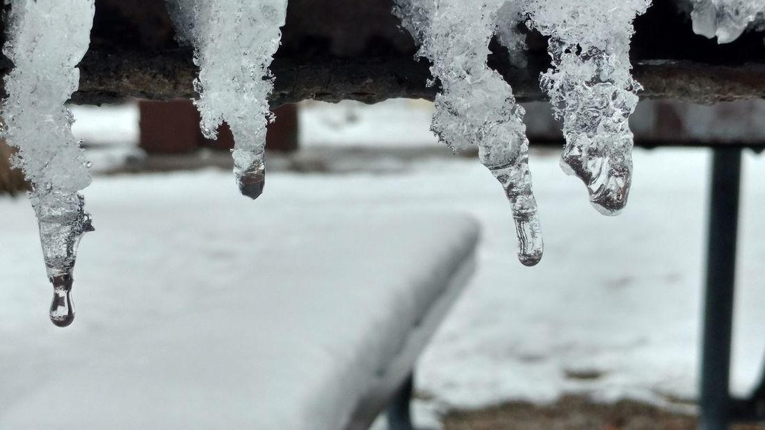 Icicles melting Taking Photos