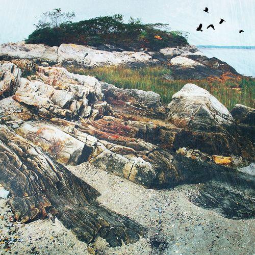 Maine coast Coast Maine Outdoors Nature No People Day Landscape