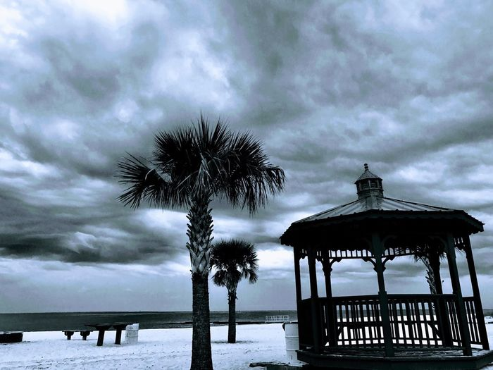 Cloud - Sky Sky Weather Low Angle View Palm Tree Nature Sea Outdoors Beauty In Nature Tree Day Built Structure Beach No People Winter Scenics Growth Horizon Over Water Architecture Storm Cloud From My Point Of View EyeEmNewHere Hello World EyeEm Best Shots - Nature Travel Destinations