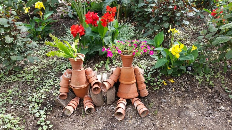 Plant Pots Bill And Ben EyeEm Selects Plant Art And Craft Nature Flowering Plant Creativity No People Outdoors