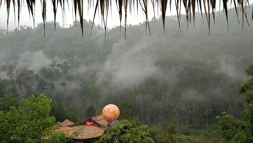 Postcode Postcards Fog Outdoors Nature Beauty In Nature Cloud - Sky Landscape Beautiful Nature Mountain Bandung, Indonesia Vacations Tourist Sport Tourism Attraction Raining Days Lost In The Landscape Perspectives On Nature Tourist Destination Tourist Attraction  Family Vacation Adventure Beautiful View