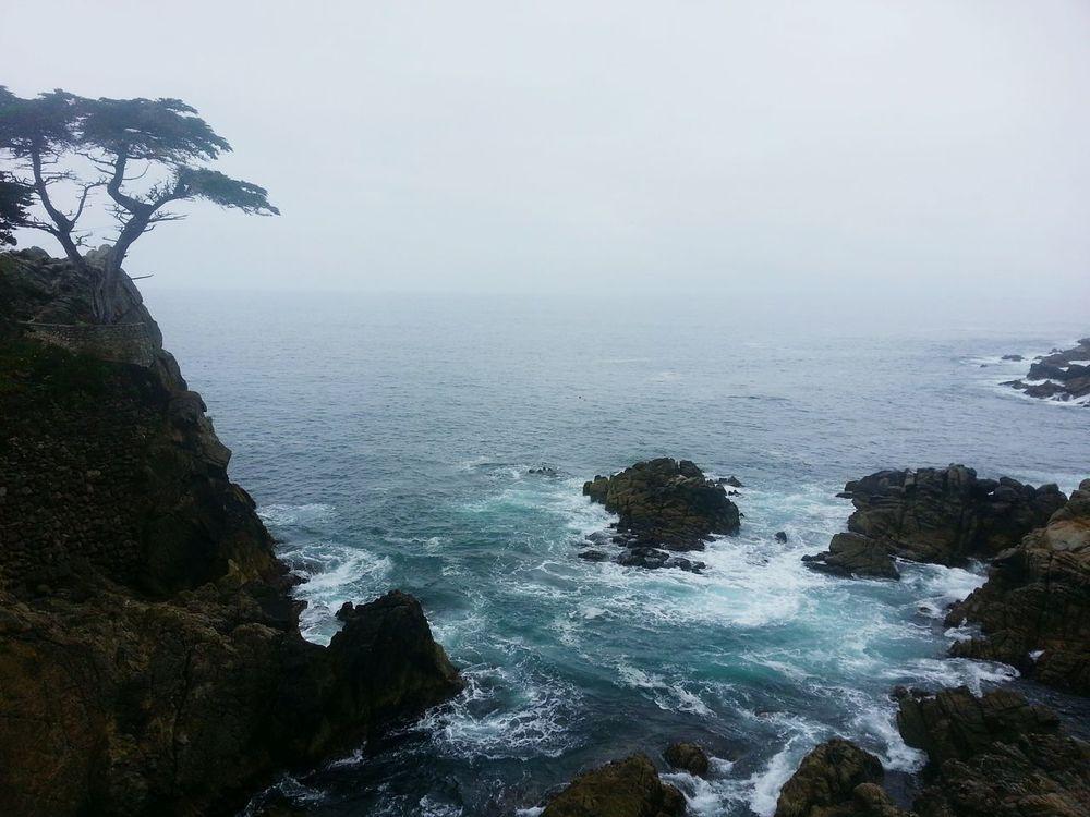 Ocean Blues Scenery Monterey Nature Pacific Ocean California Coastline Road Trip Traveling America Cali Waves Blue 17 Mile Drive