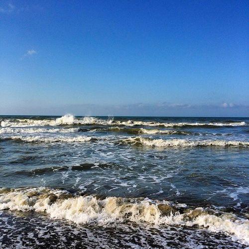 Casa Castiglionedellapescaia Toscana Mare Natura Spumeggiante Spiaggia Summer Holidays Home Sunnyday Sole Pausa Pace Profumo Iodio Paesaggio Landscape Italia Igertoscana Blu Conchiglie Colore Luce Seaside sea