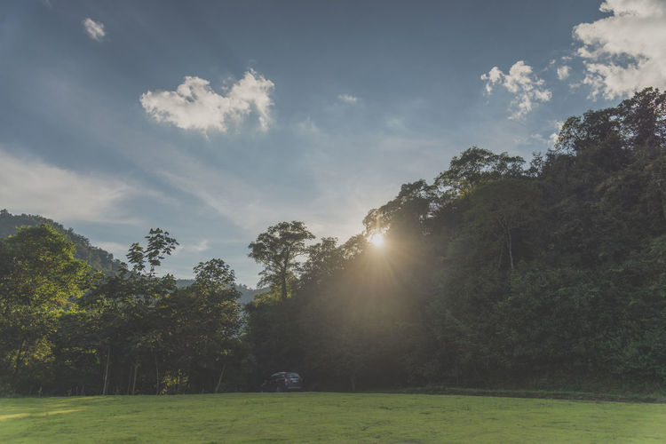 wild travel Beauty In Nature Cloud - Sky Day Grass Green Color Growth Land Landscape Lens Flare Nature No People Non-urban Scene Outdoors Plant Scenics - Nature Sky Streaming Sun Sunbeam Sunlight Tranquil Scene Tranquility Tree
