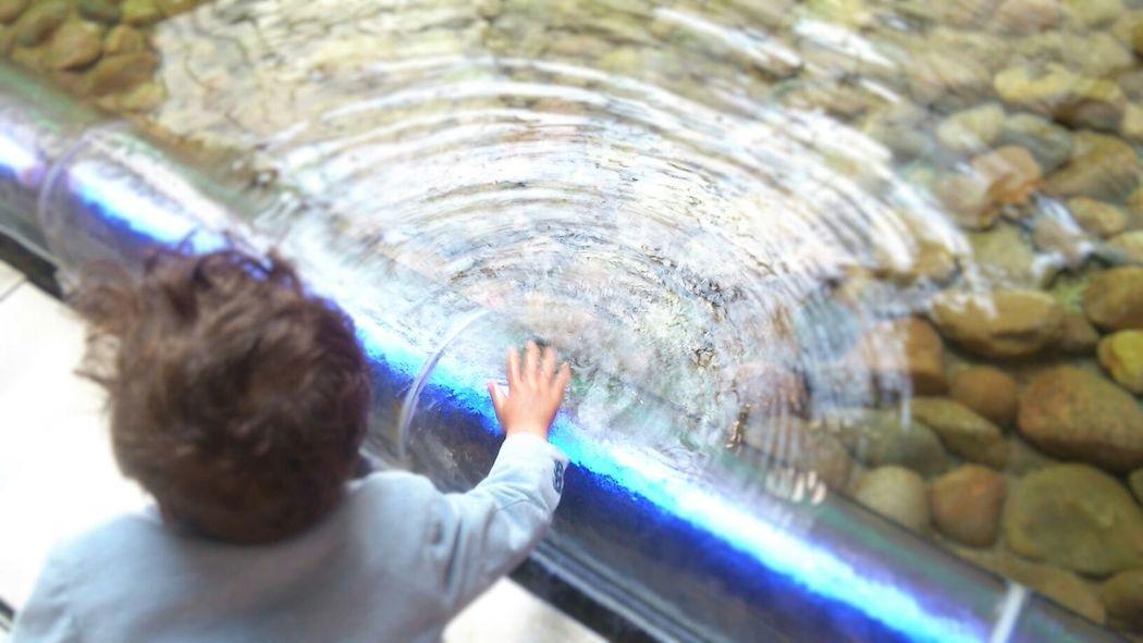 Taking Photos Europacenter Water Kids Berlin