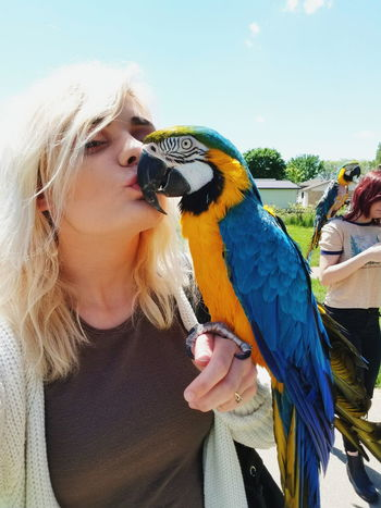 One Person Only Women Pets Parrot Bird People Adult Real People Lifestyles Outdoors Women Day Nature Macaw Perching Young Adult Close-up