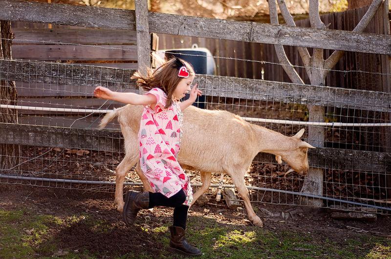 Full Length Of Girl Running At Farm