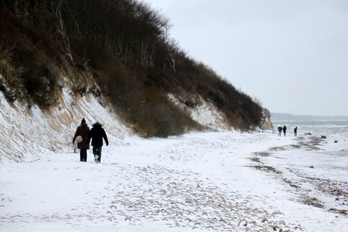 Winterstrand Beauty In Nature Cold Temperature Nature Outdoors Sea Snow Vacations Walking