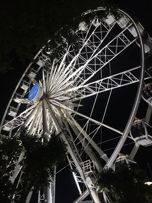 Mutig zu sein heißt nicht, keine Angst zu haben. Mutig zu sein heißt, etwas mit Angst zu tun! Riesenrad Waterfront Kapstadt Observation Wheel Ferris Wheel No People Night Outdoors Kapstadt Südafrika Cap Wheel