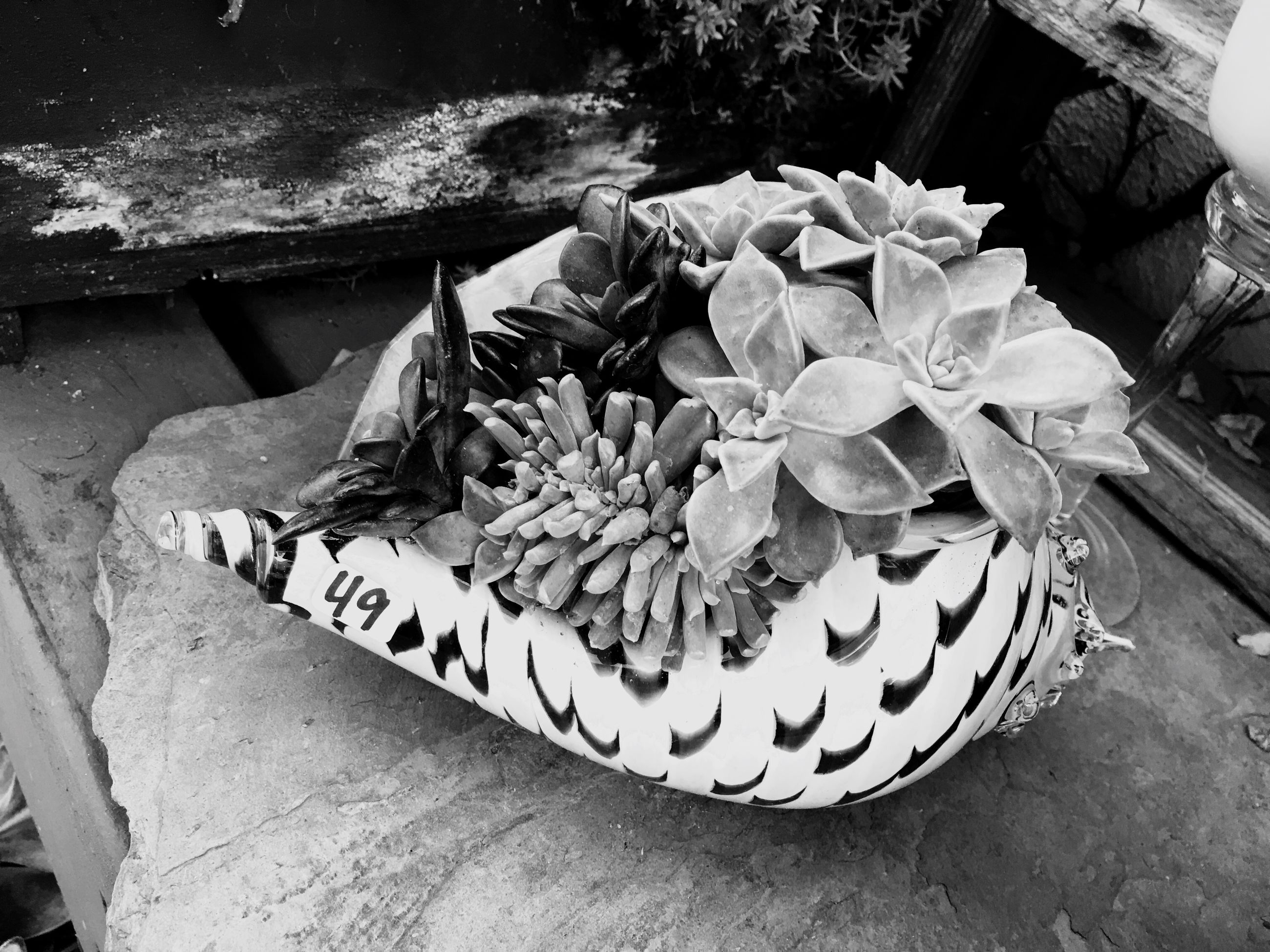 high angle view, flower, water, plant, outdoors, day, freshness, nature, sunlight, beauty in nature, lifestyles, bench, front or back yard, men, basket, sitting, leaf, street