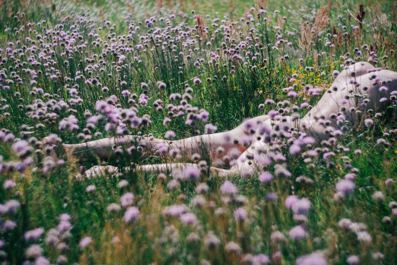 Naked person lying amidst flowers on field
