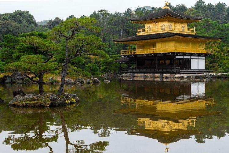 Japan The Tourist