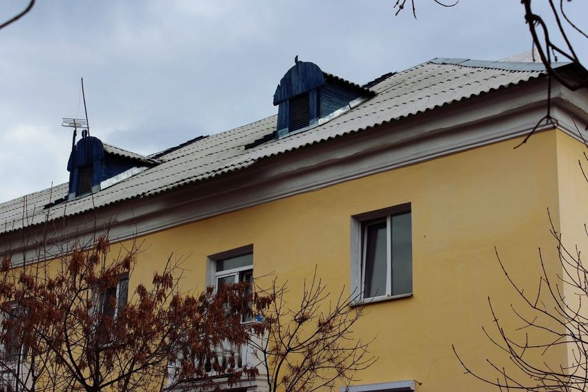 Branch Sky Old House Old Town Russia Krasnoyarsk Universiade 2019 Colorful Colors Old Buildings House Overcast Grey Day Grey Sky