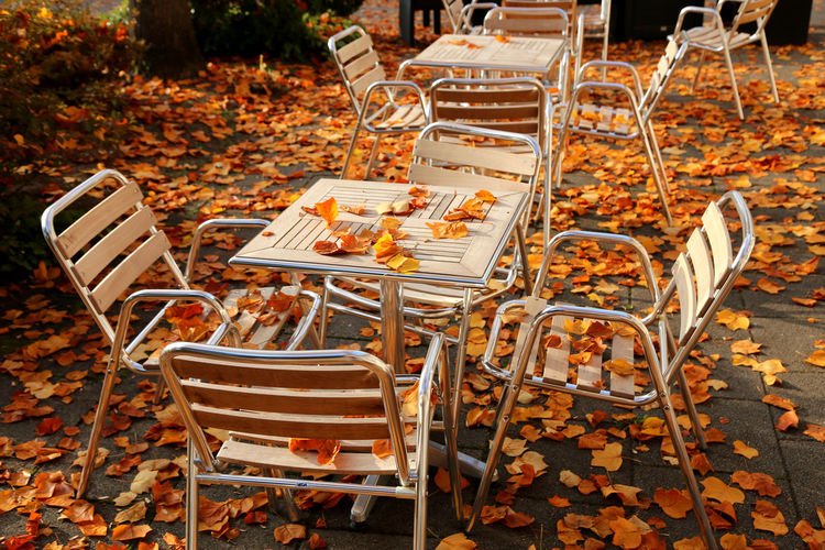 Empty chairs and tables in park during autumn