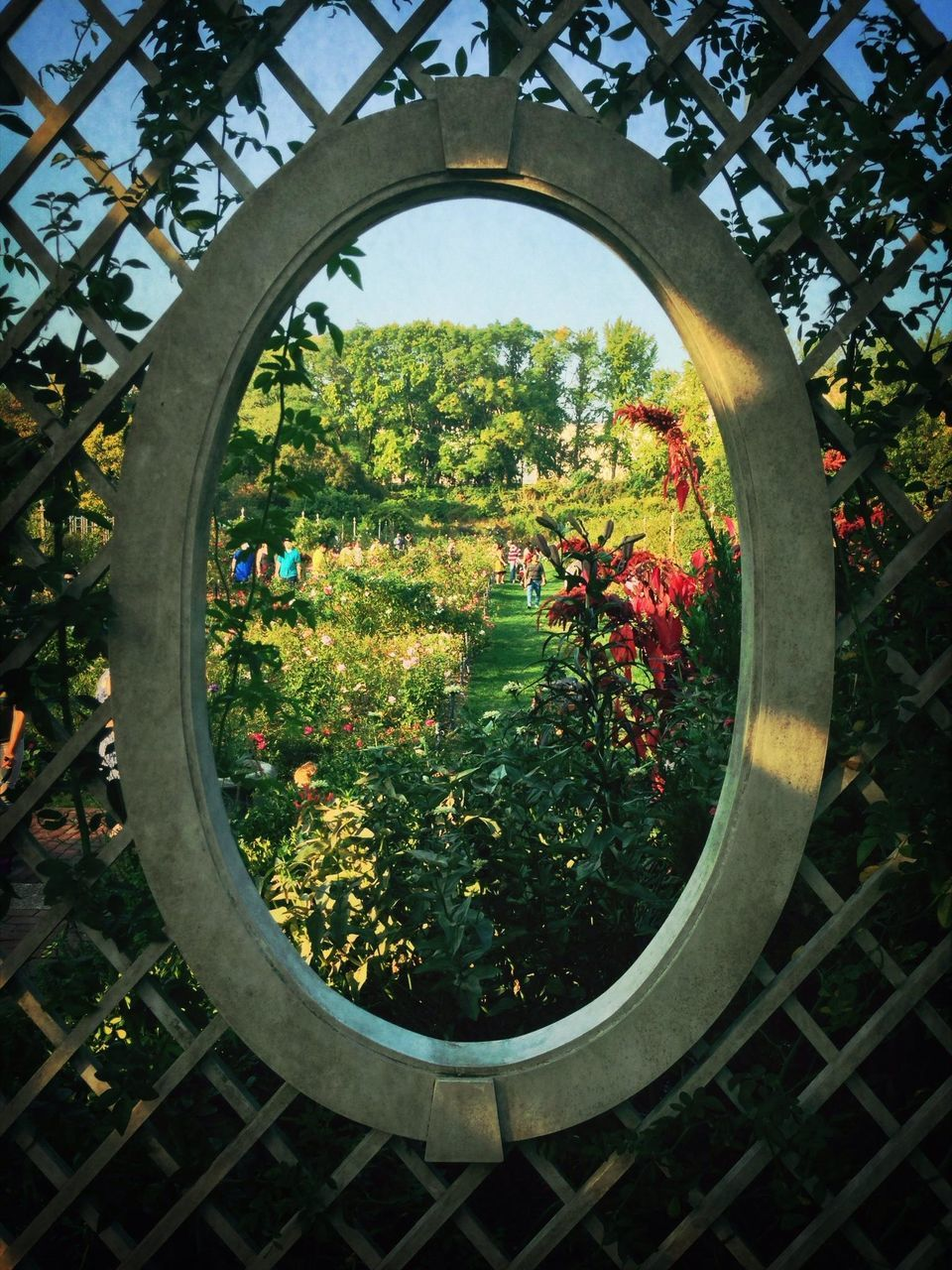 View of people in park through oval window
