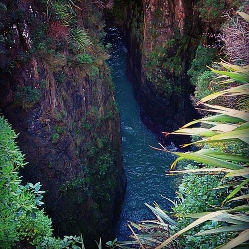 Jacksblowhole NZ Southisland